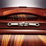 """American Tourister Star Wars 21"""" Spinner in the color Chewbacca."""