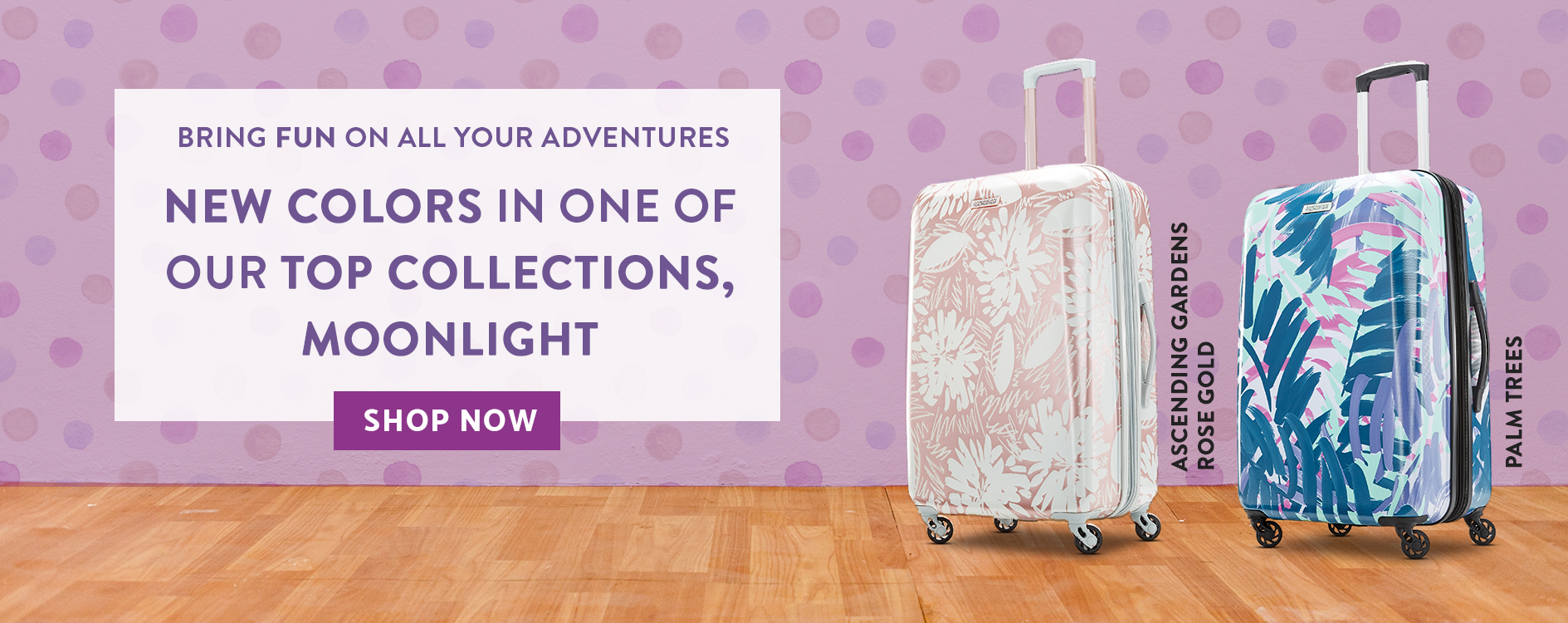 0f1e5c4166e Bring fun on all your adventures. New Colors in one our top collections,  Moonlight